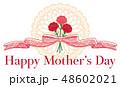 母の日 カーネーション リボン飾り タイトル 48602021