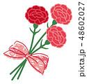 母の日 カーネーション ブーケ リボン 48602027