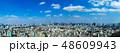 (東京都-風景パノラマ)新宿からお台場方面までの風景 48609943