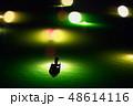 シラスウナギ漁 吉野川 48614116