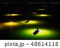 シラスウナギ漁 吉野川 48614118
