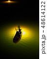 シラスウナギ漁 吉野川 48614122