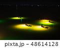 シラスウナギ漁 吉野川 48614128