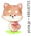 犬 鞄 動物のイラスト 48616755
