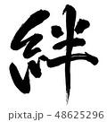 書道 毛筆 文字のイラスト 48625296