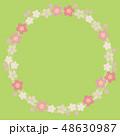 桜 フレーム 春のイラスト 48630987