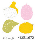 Exotic tropical fruits Jackfuit set Hand drawn sketch doodle design elements with abstract shapes 48631672