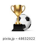 サッカーボール ベクトル 金色のイラスト 48632022