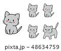 表情 セット 猫のイラスト 48634759