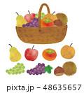 フルーツ 秋の味覚 果物のイラスト 48635657