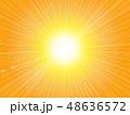 背景 放射状 光のイラスト 48636572