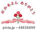 母の日 カーネーション 花束 リボン 感謝 48636899