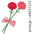 母の日 カーネーション ブーケ リボン 48637223