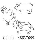 肉になる動物のイラスト(線画) 48637699