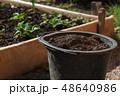 ガーデン ガーデニング 園芸の写真 48640986