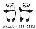 ぱんだ パンダ キャラクターのイラスト 48642358