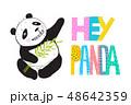 ぱんだ パンダ 動物のイラスト 48642359