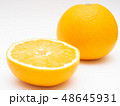 八朔 柑橘類 果物の写真 48645931