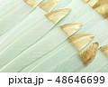 羽根 緑色 金の写真 48646699