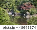 日本庭園 万博記念公園 庭園の写真 48648374