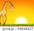 場面 シーン 画面のイラスト 48648427