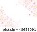 桜 フレーム 桜吹雪のイラスト 48653091
