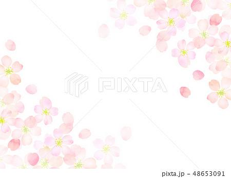 桜 水彩風 テクスチャー 48653091