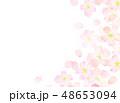 桜 模様 桜吹雪のイラスト 48653094