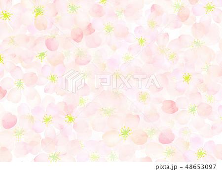 桜 水彩風 テクスチャー 48653097
