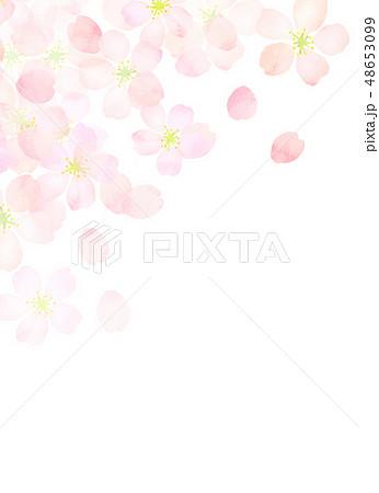 桜 水彩風 テクスチャー 48653099