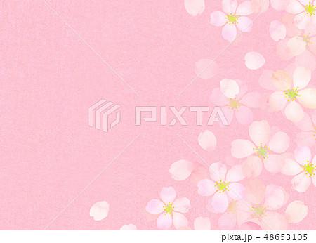 桜 水彩風 テクスチャー 48653105