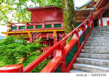 新緑の祐徳稲荷神社 【佐賀県鹿島市】 48669596