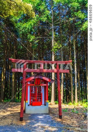 新緑の祐徳稲荷神社 【佐賀県鹿島市】 48669609