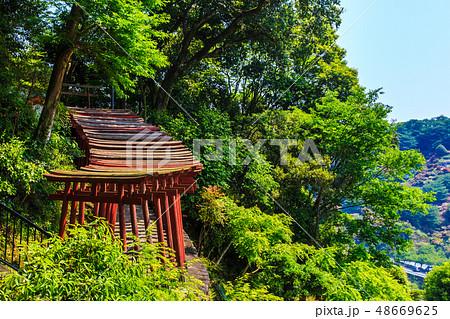 新緑の祐徳稲荷神社 【佐賀県鹿島市】 48669625