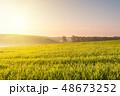 景色 風景 野原の写真 48673252