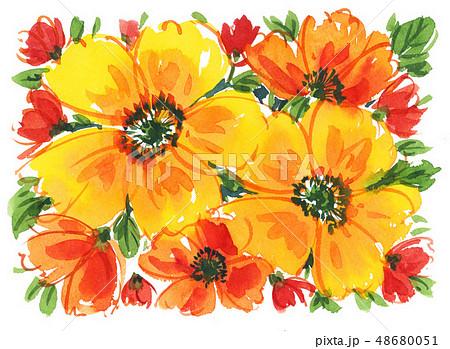 flowers19309pix7 48680051