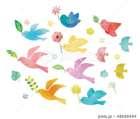 鳥と緑と花のイラスト素材 48688494 Pixta