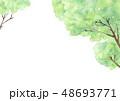 新緑の森林風景 背景 水彩 48693771