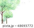 新緑の森林風景 背景 水彩 48693772