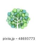 樹木 デザイン 水彩 48693773