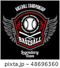 ベースボール 白球 野球のイラスト 48696360