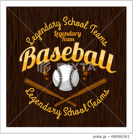 Vintage baseball label and badge - vector stock. 48696361