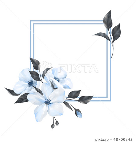 Frame with white flowers 48700242