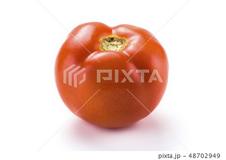 The red shiny tomatoe on white background 48702949