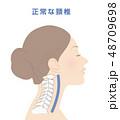 頸椎 骨 骨格のイラスト 48709698