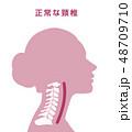 頸椎 骨 骨格のイラスト 48709710