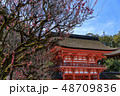 下鴨神社 神社 賀茂御祖神社の写真 48709836