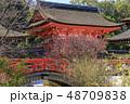 下鴨神社 神社 賀茂御祖神社の写真 48709838