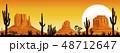 砂漠 夕日 夕焼のイラスト 48712647