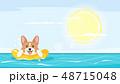 summer season  background 48715048